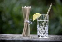 Maistic - sugerør i bambus - lange - 6 stk