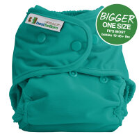 BIGGER Best Bottom AI2 - cover - all ruba
