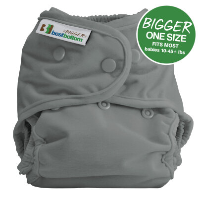 BIGGER Best Bottom AI2 - cover - one shade of gray