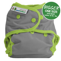 BIGGER Best Bottom AI2 - cover - dragonfly ripple