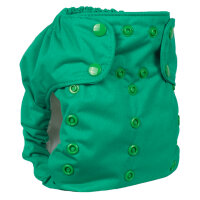 Smart Bottoms - dream diaper 2.0 AIO - basic green