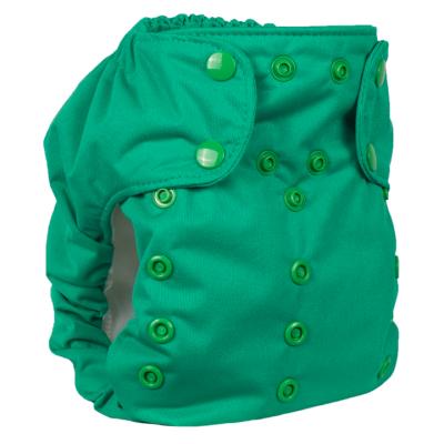 Smart Bottoms - dream diaper 2.0 AIO - basic green
